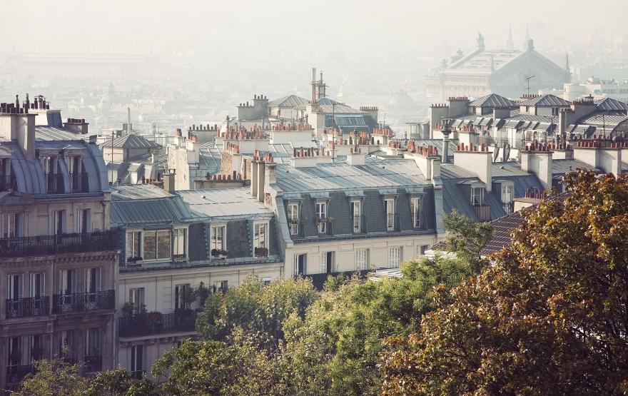 Paris cityscape rooftops